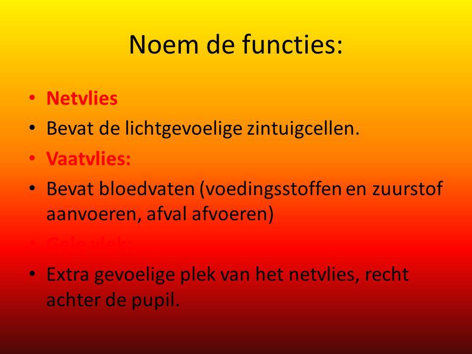 Noem de functies: Netvlies Bevat de lichtgevoelige zintuigcellen. Vaatvlies: Bevat bloedvaten (voedingsstoffen en zuurstof aanvoeren, afval afvoeren)