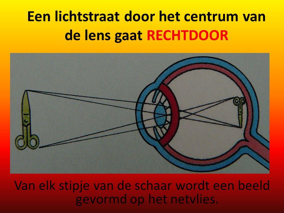 Een lichtstraat door het centrum van de lens gaat RECHTDOOR Van elk stipje van de schaar wordt een beeld gevormd op het netvlies.