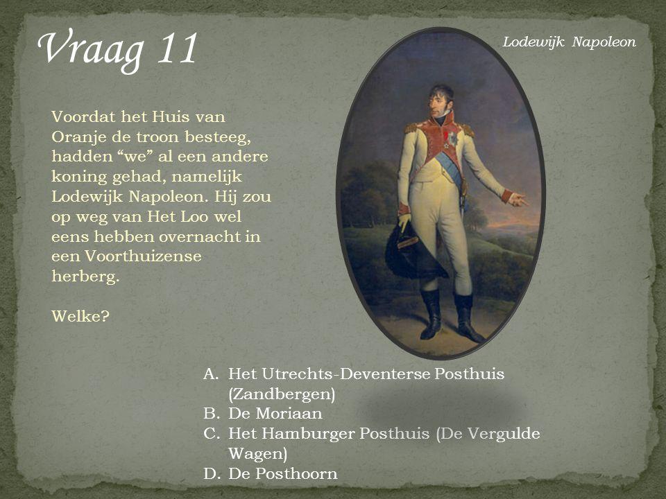 Voordat het Huis van Oranje de troon besteeg, hadden we al een andere koning gehad, namelijk Lodewijk Napoleon.