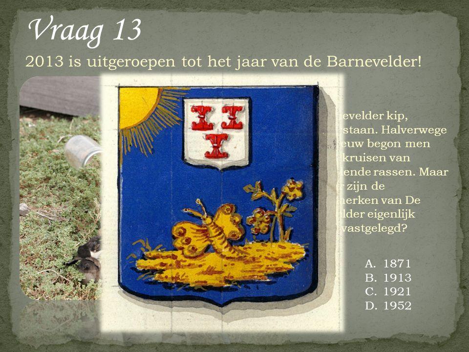 2013 is uitgeroepen tot het jaar van de Barnevelder! Vraag 13 A.1871 B.1913 C.1921 D.1952 De Barnevelder kip, welteverstaan. Halverwege de 19 e eeuw b