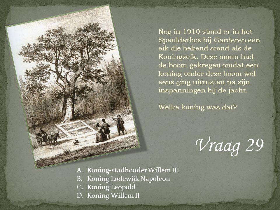 Vraag 29 Nog in 1910 stond er in het Speulderbos bij Garderen een eik die bekend stond als de Koningseik. Deze naam had de boom gekregen omdat een kon