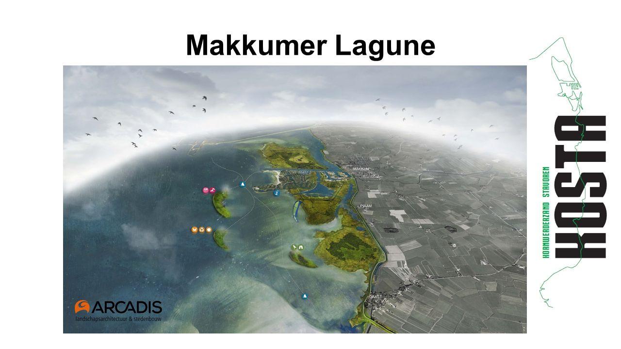 Makkumer Lagune