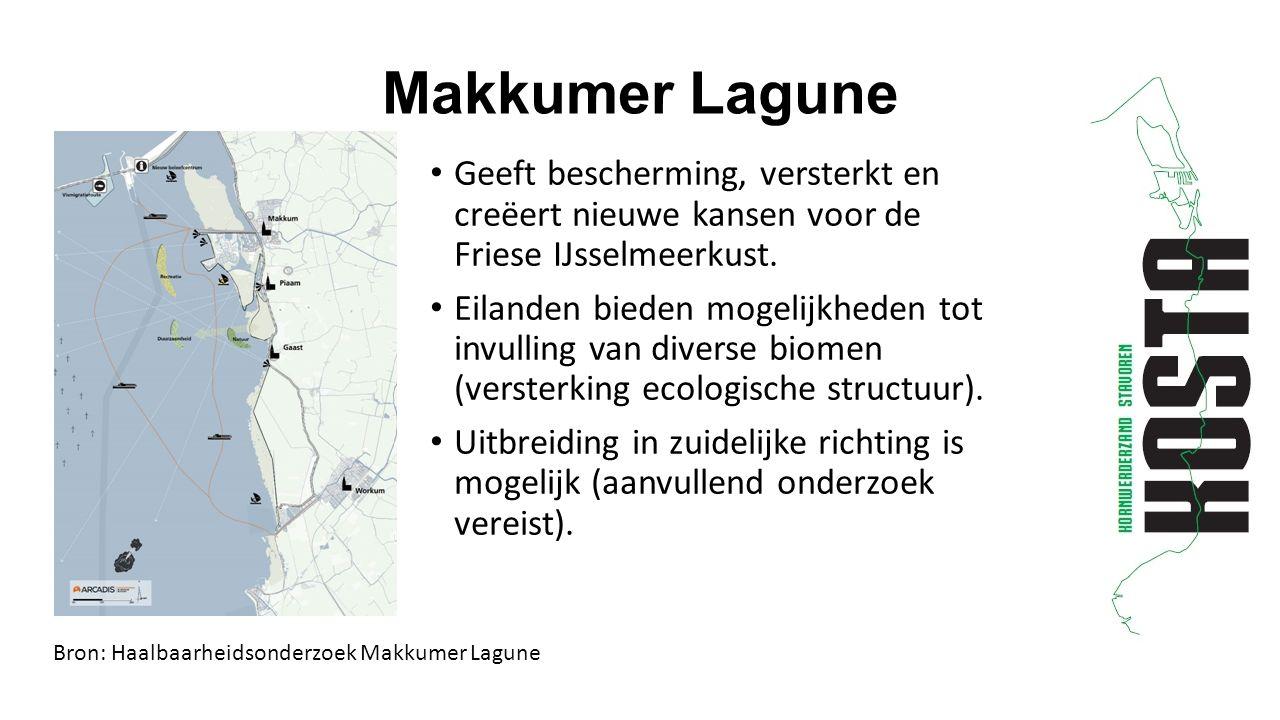 Geeft bescherming, versterkt en creëert nieuwe kansen voor de Friese IJsselmeerkust.