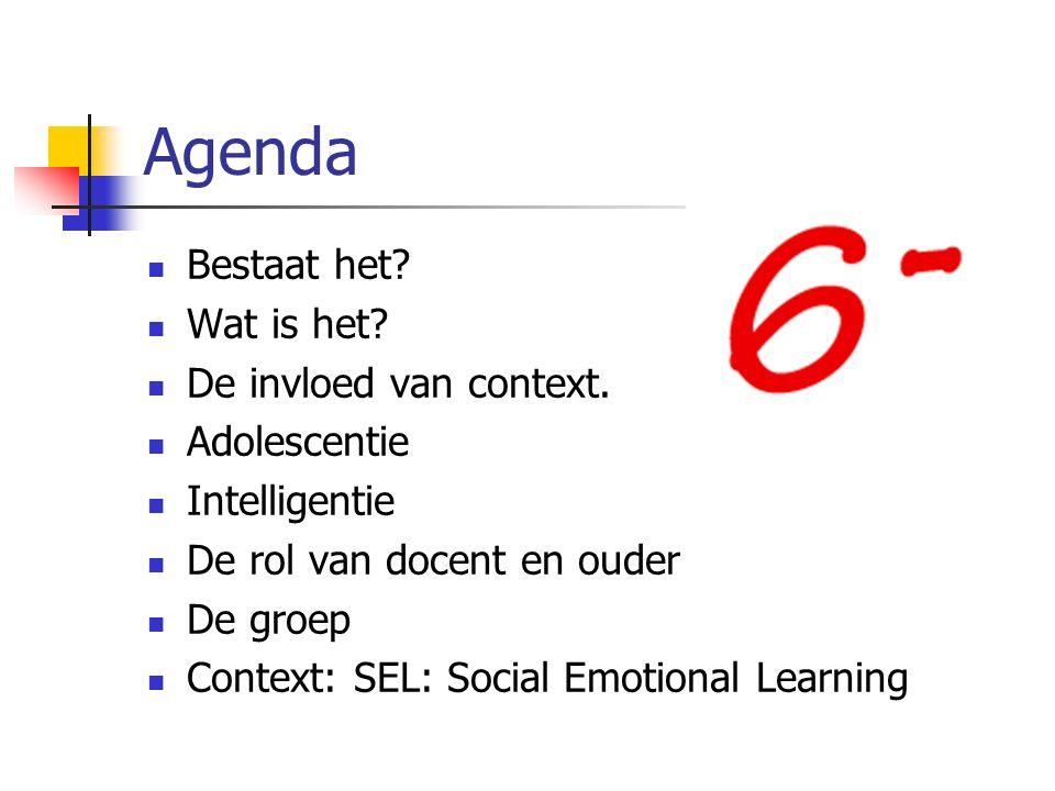 Agenda Bestaat het. Wat is het. De invloed van context.