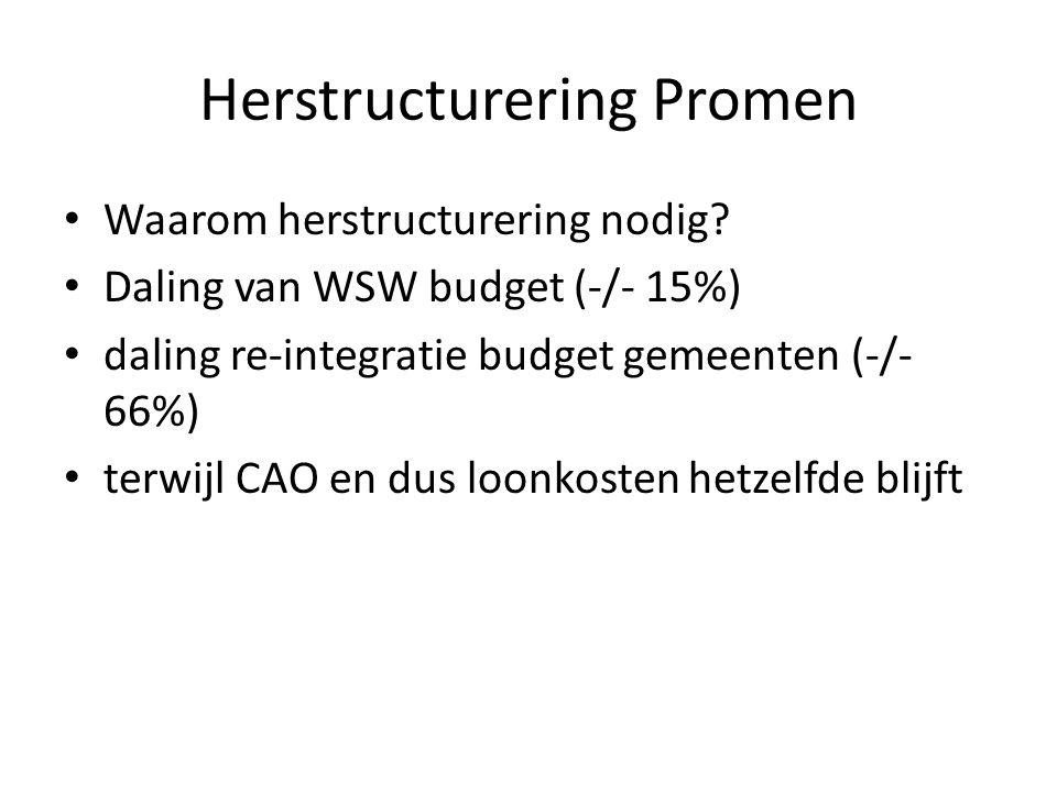 Herstructurering Promen Waarom herstructurering nodig.