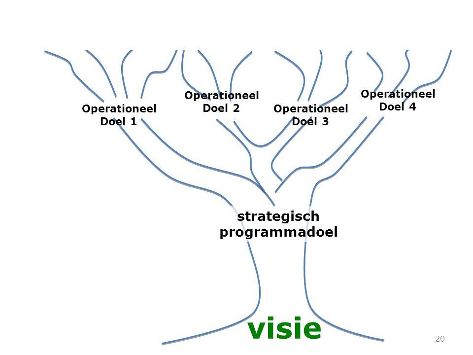 20 strategisch programmadoel visie Operationeel Doel 1 Producten InspanningenDeliverables Achievements Inspanningen Resultaten Activiteiten Projecten Operationeel Doel 2 Operationeel Doel 3 Operationeel Doel 4