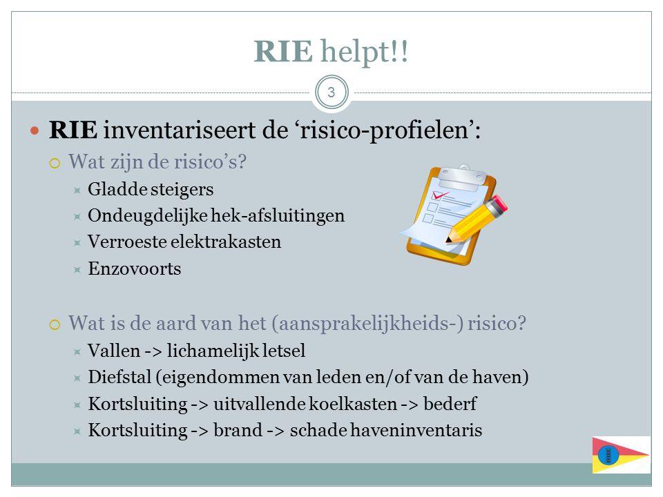 RIE helpt!! RIE inventariseert de 'risico-profielen':  Wat zijn de risico's?  Gladde steigers  Ondeugdelijke hek-afsluitingen  Verroeste elektraka