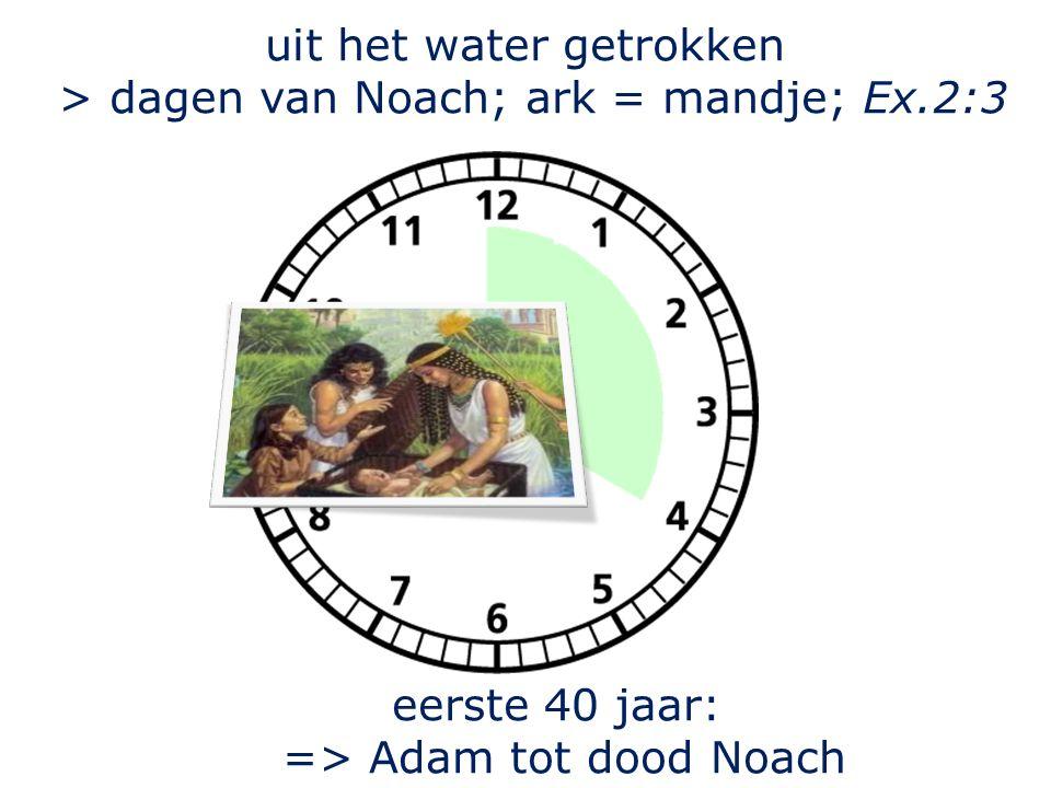 uit het water getrokken > dagen van Noach; ark = mandje; Ex.2:3 eerste 40 jaar: => Adam tot dood Noach