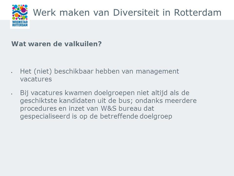 Werk maken van Diversiteit in Rotterdam Wat waren de valkuilen.