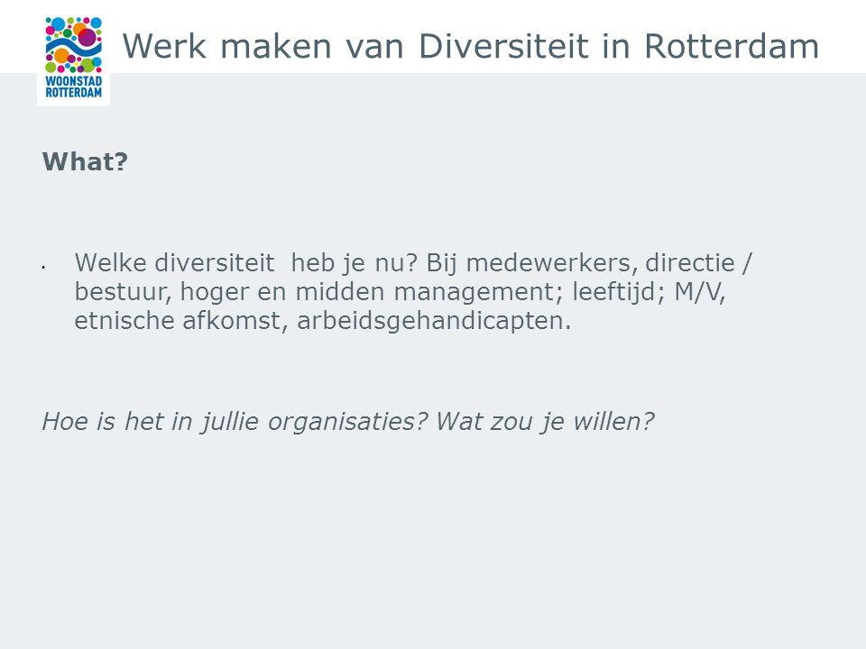 Werk maken van Diversiteit in Rotterdam What. Welke diversiteit heb je nu.