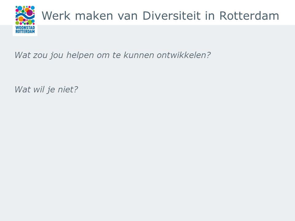 Werk maken van Diversiteit in Rotterdam Wat zou jou helpen om te kunnen ontwikkelen.