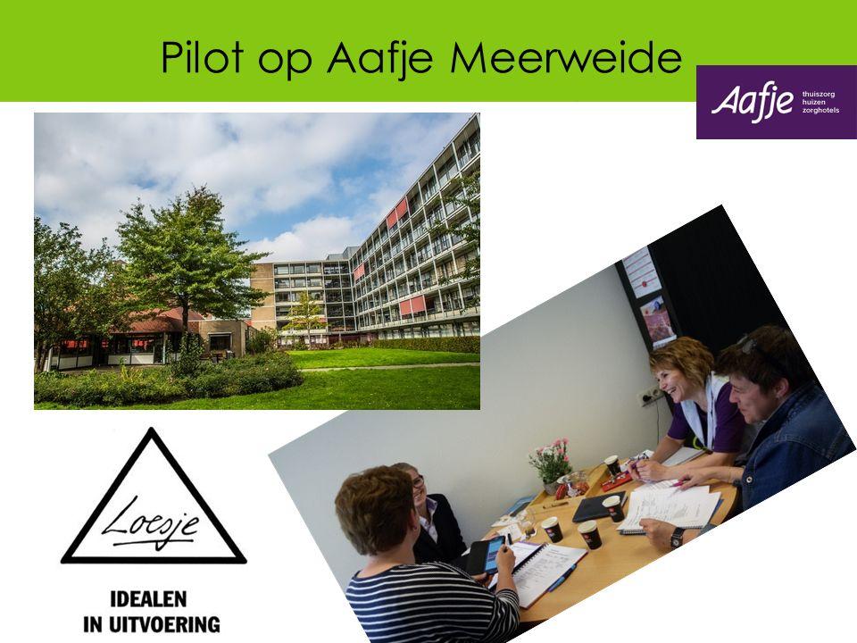 Pilot op Aafje Meerweide