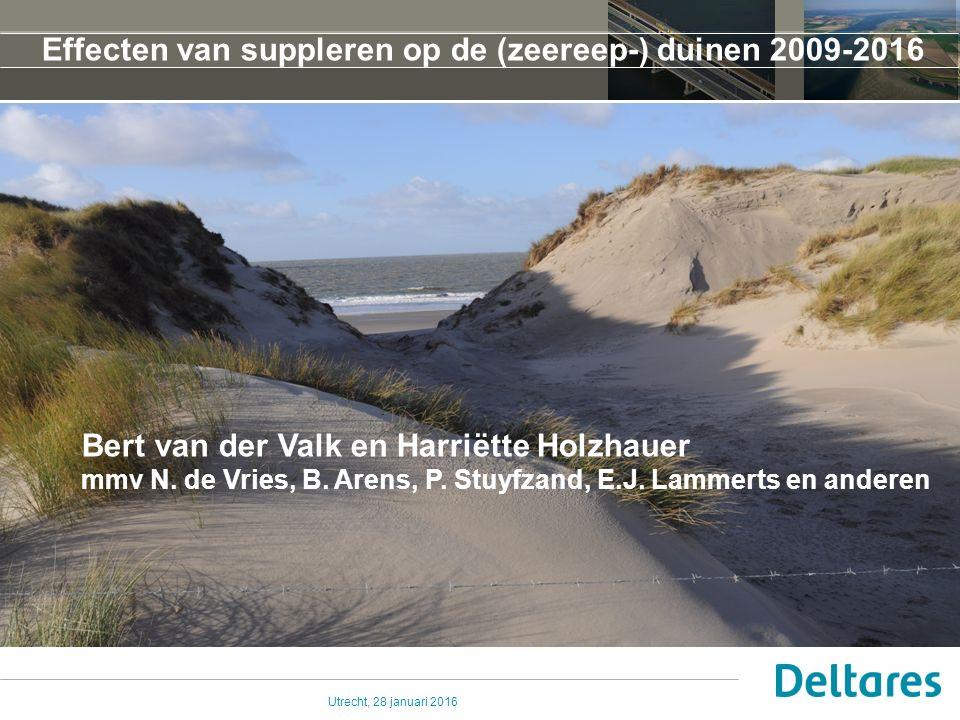 Utrecht, 28 januari 2016 Wat gebeurt er met de kustduinen bij suppleren van strand/vooroever .