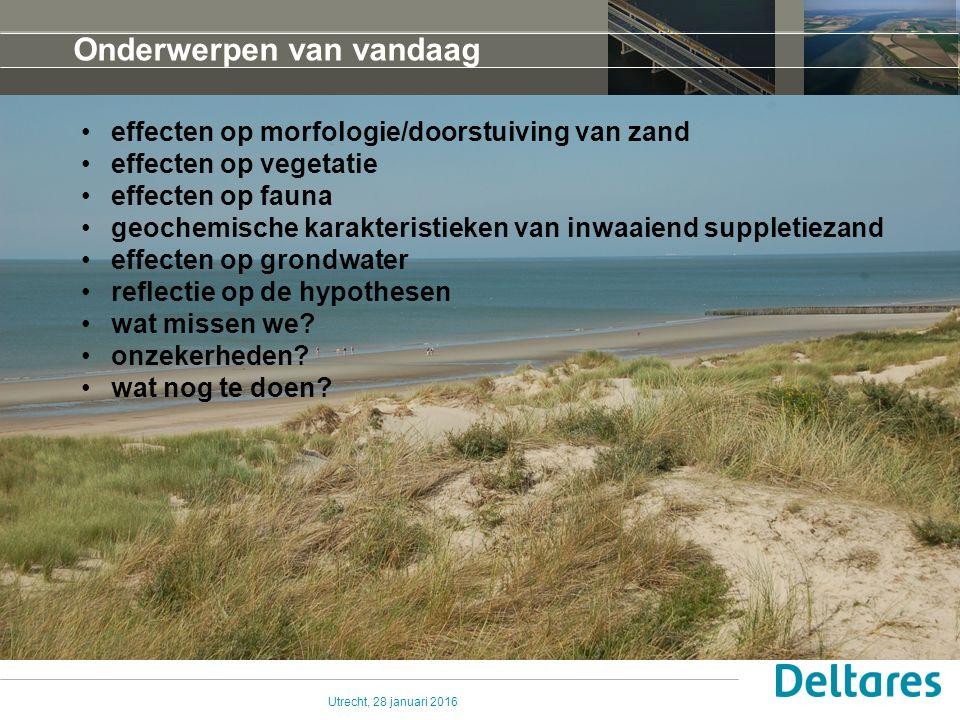 Utrecht, 28 januari 2016Delft, 17 sep 2009 Effecten op de morfologie: alsmaar MEER zand in de zeereep sinds start uitvoering suplletieprogramma .