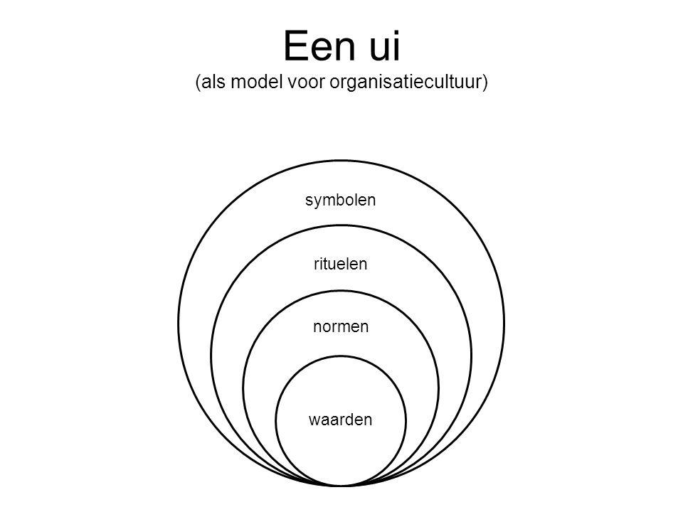 Een ui (als model voor organisatiecultuur)