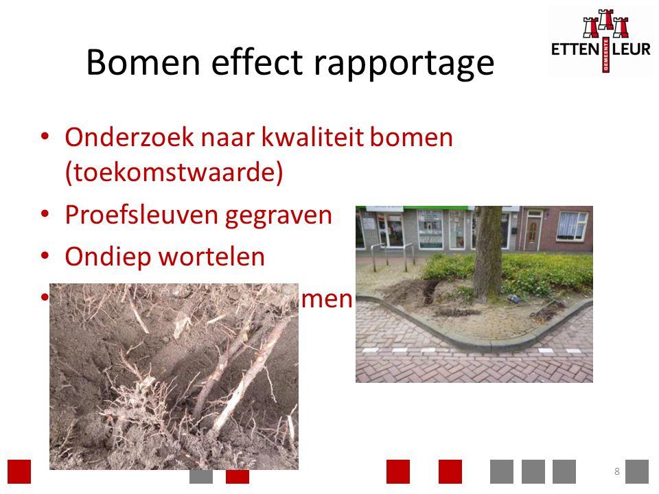 Bomen effect rapportage Onderzoek naar kwaliteit bomen (toekomstwaarde) Proefsleuven gegraven Ondiep wortelen parkeren tussen bomen niet mogelijk 8