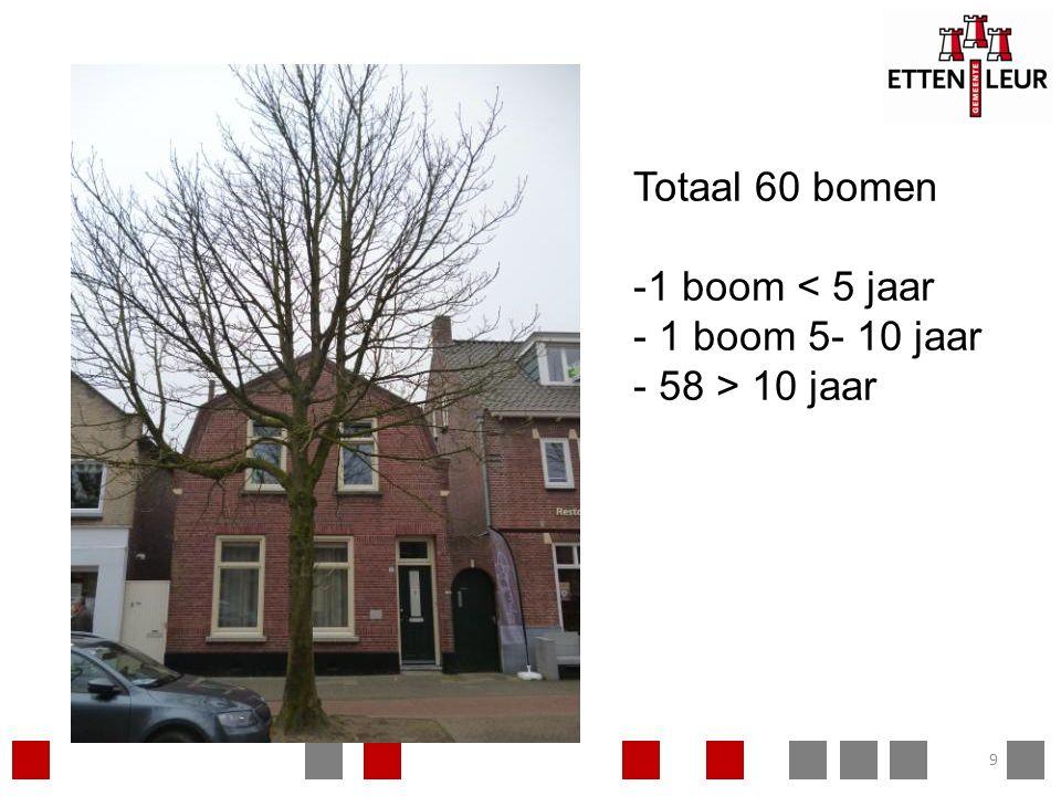 9 Totaal 60 bomen -1 boom < 5 jaar - 1 boom 5- 10 jaar - 58 > 10 jaar
