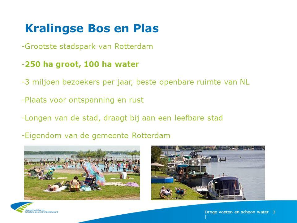 Kralingse Bos en Plas Droge voeten en schoon water | 3 -Grootste stadspark van Rotterdam -250 ha groot, 100 ha water -3 miljoen bezoekers per jaar, be