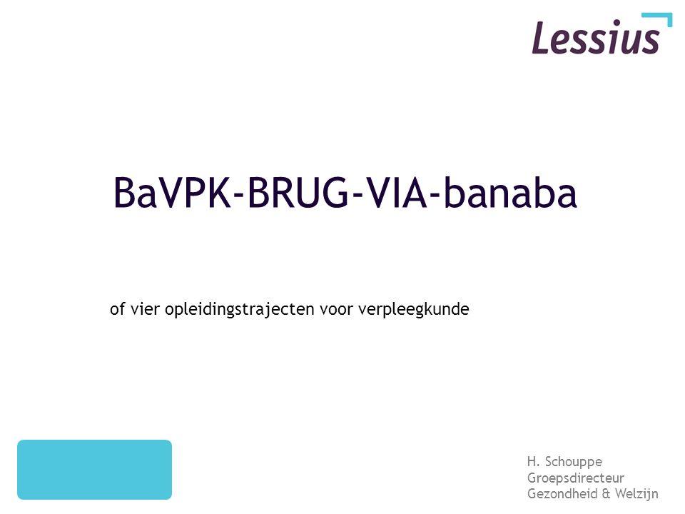 BaVPK-BRUG-VIA-banaba of vier opleidingstrajecten voor verpleegkunde H.
