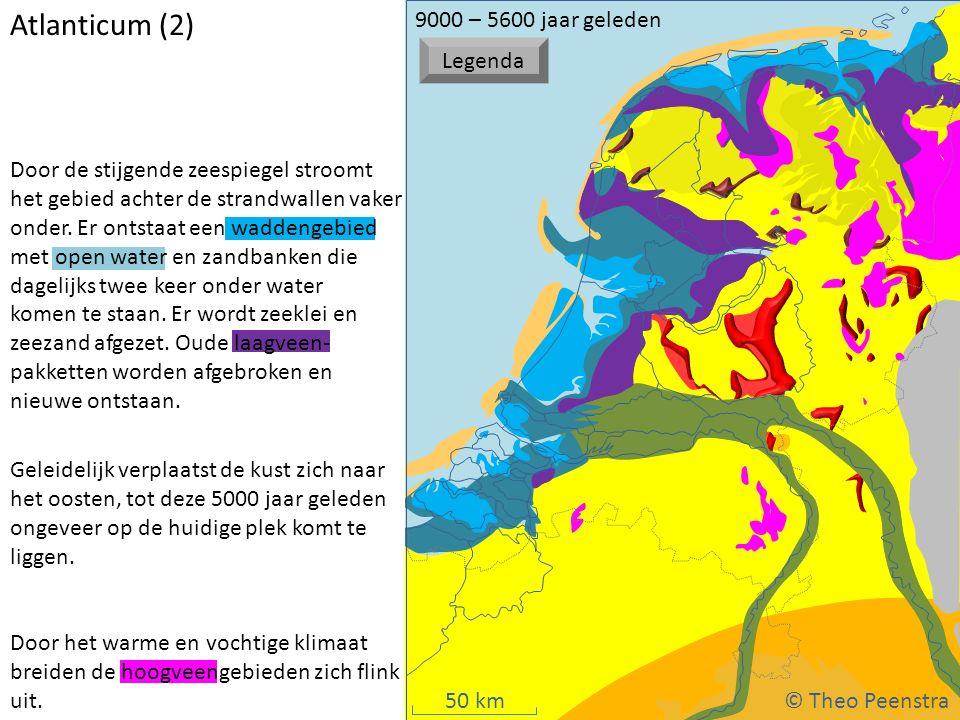 50 km Door het warme en vochtige klimaat breiden de hoogveengebieden zich flink uit. Door de stijgende zeespiegel stroomt het gebied achter de strandw