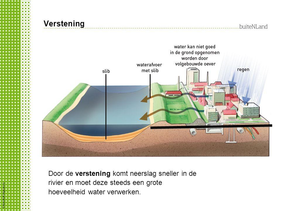 Verstening Door de verstening komt neerslag sneller in de rivier en moet deze steeds een grote hoeveelheid water verwerken.