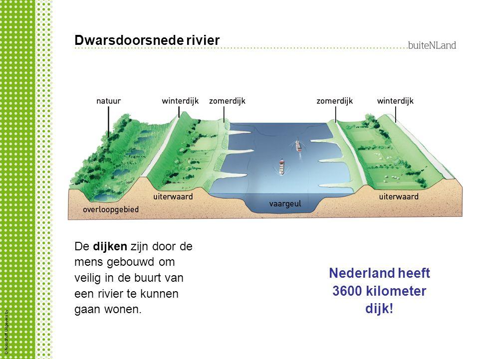 Dwarsdoorsnede rivier De dijken zijn door de mens gebouwd om veilig in de buurt van een rivier te kunnen gaan wonen. Nederland heeft 3600 kilometer di