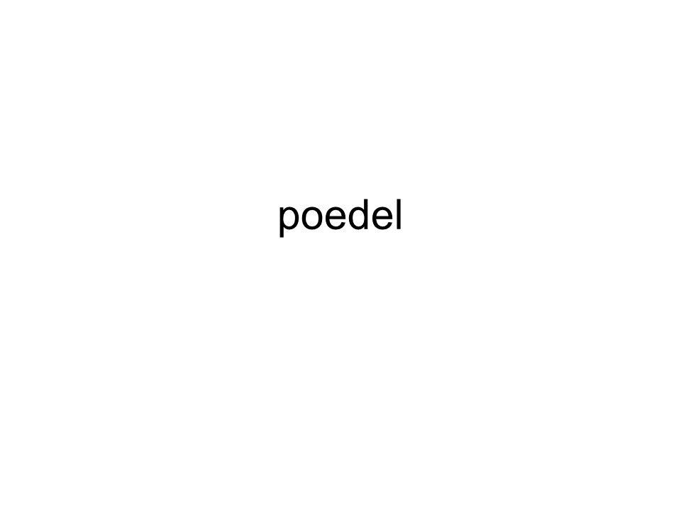 poedel