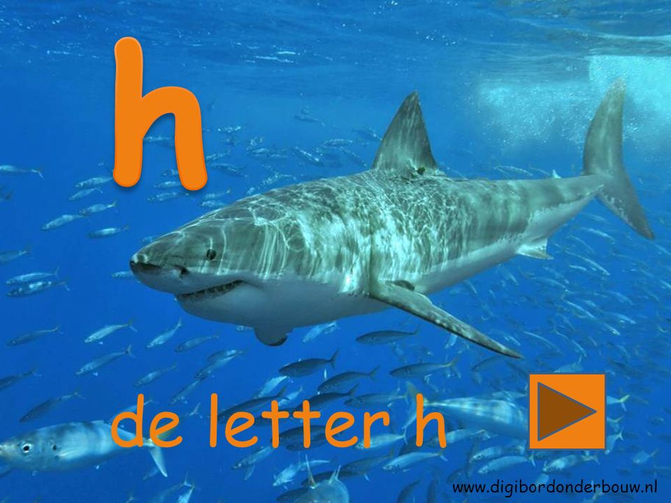 de letter h www.digibordonderbouw.nl