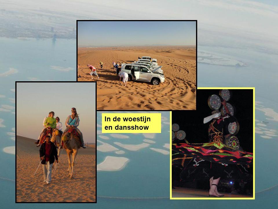 In de woestijn en dansshow