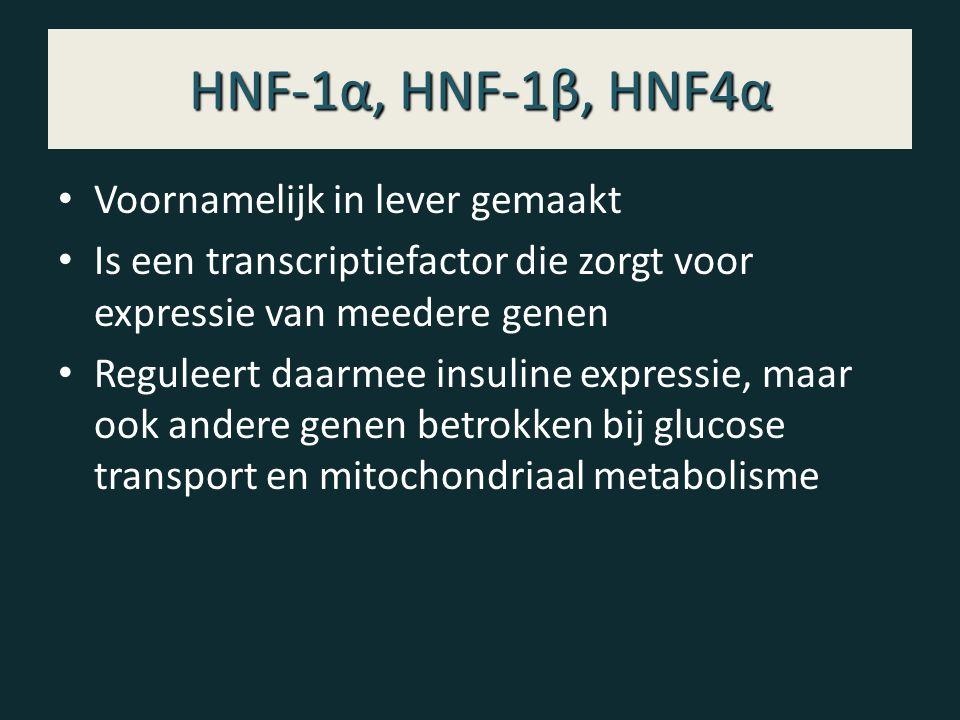 HNF-1α, HNF-1β, HNF4α Voornamelijk in lever gemaakt Is een transcriptiefactor die zorgt voor expressie van meedere genen Reguleert daarmee insuline expressie, maar ook andere genen betrokken bij glucose transport en mitochondriaal metabolisme