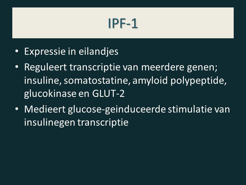 IPF-1 Expressie in eilandjes Reguleert transcriptie van meerdere genen; insuline, somatostatine, amyloid polypeptide, glucokinase en GLUT-2 Medieert glucose-geinduceerde stimulatie van insulinegen transcriptie