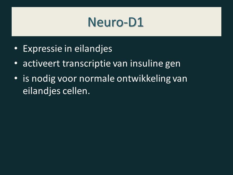 Neuro-D1 Expressie in eilandjes activeert transcriptie van insuline gen is nodig voor normale ontwikkeling van eilandjes cellen.
