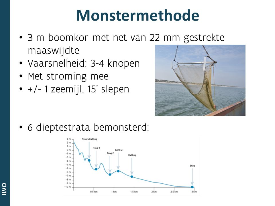 ILVO 3 m boomkor met net van 22 mm gestrekte maaswijdte Vaarsnelheid: 3-4 knopen Met stroming mee +/- 1 zeemijl, 15' slepen 6 dieptestrata bemonsterd:
