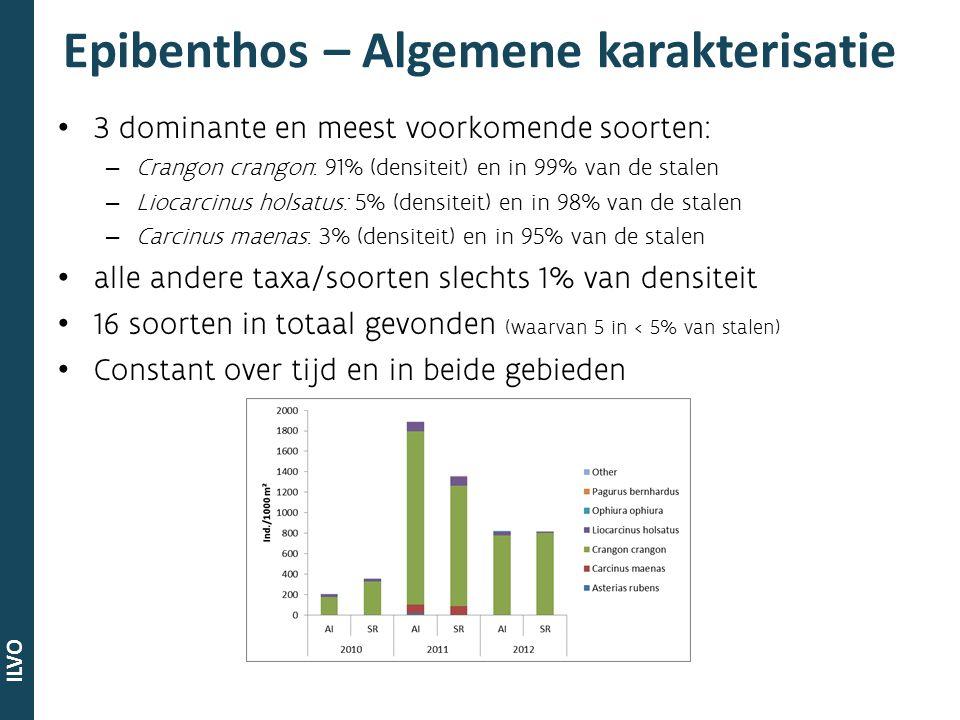 ILVO Demersale vis – Algemene karakterisatie 3 meest voorkomende soorten: – Pomatoschistus: in 92% van de stalen – Pleuronectes platessa: in 76% van de stalen – Syngnathus rostellatus: in 76% van de stalen 27 soorten in totaal (waarvan 8 in < 5% van stalen) dominante soorten verschillen tussen jaren en tussen locaties