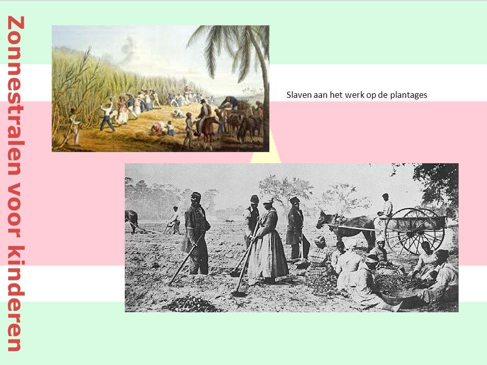 Slaven aan het werk op de plantages