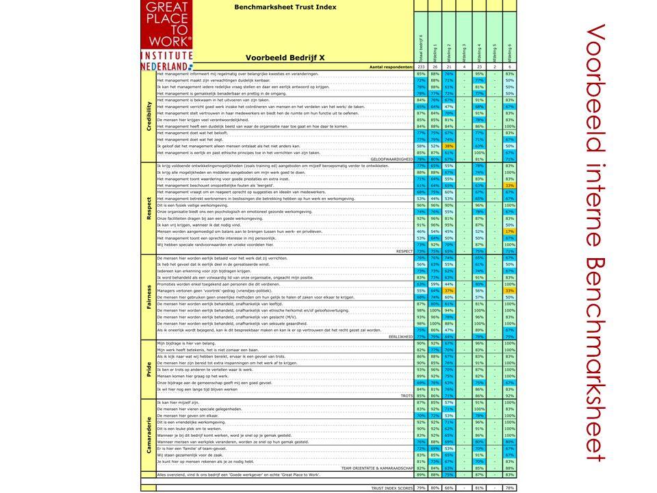 Voorbeeld interne Benchmarksheet