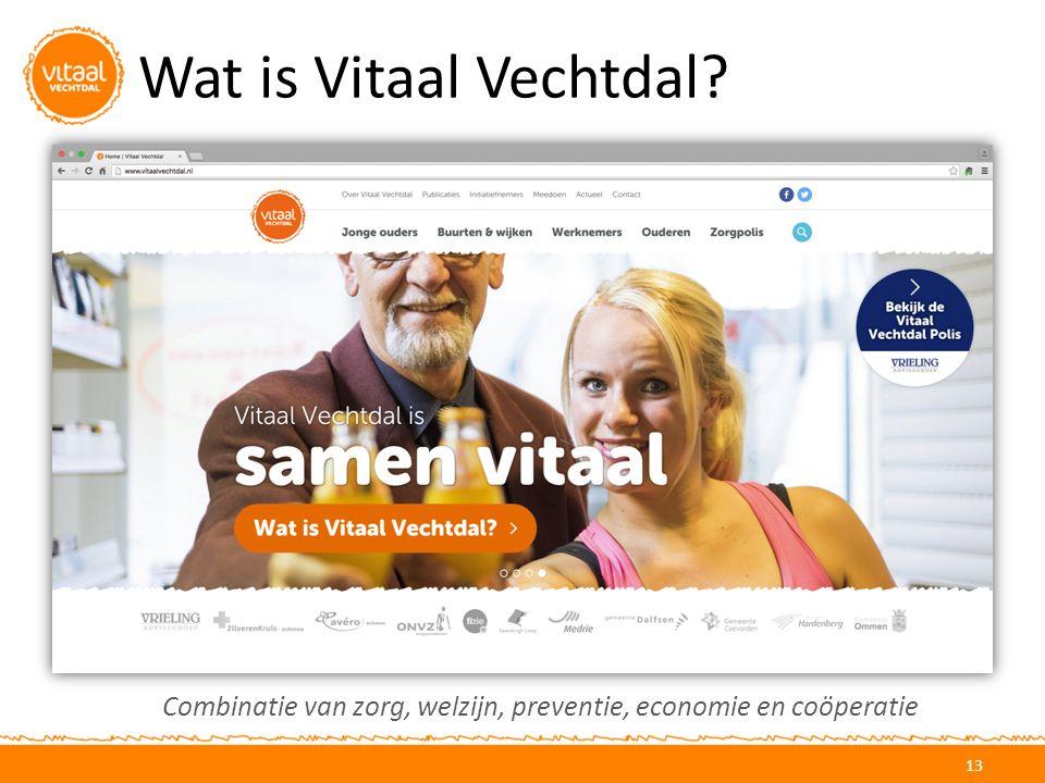 Wat is Vitaal Vechtdal? 13 Combinatie van zorg, welzijn, preventie, economie en coöperatie