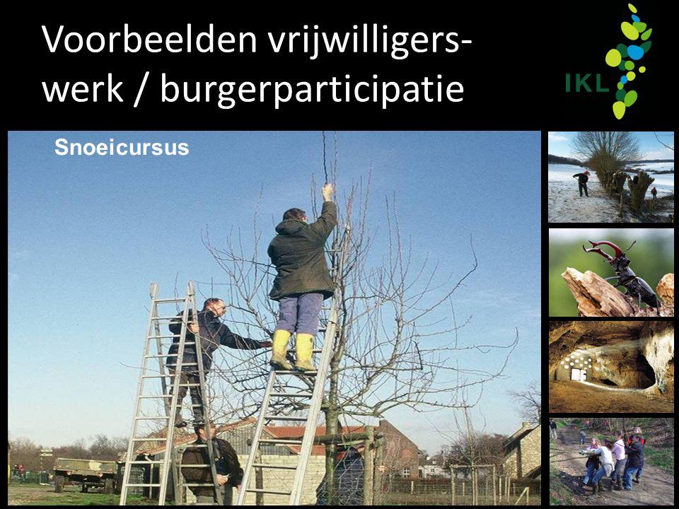 Voorbeelden vrijwilligers- werk / burgerparticipatie Snoeicursus