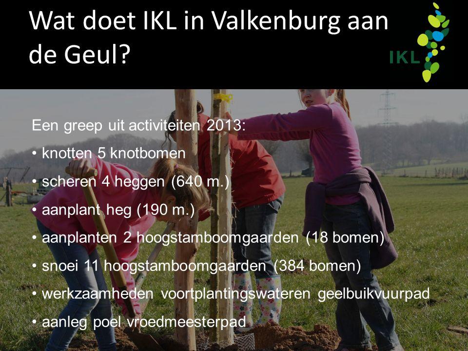 Wat doet IKL in Valkenburg aan de Geul? Een greep uit activiteiten 2013: knotten 5 knotbomen scheren 4 heggen (640 m.) aanplant heg (190 m.) aanplante