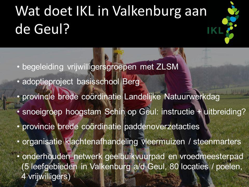 Wat doet IKL in Valkenburg aan de Geul? begeleiding vrijwilligersgroepen met ZLSM adoptieproject basisschool Berg provincie brede coördinatie Landelij