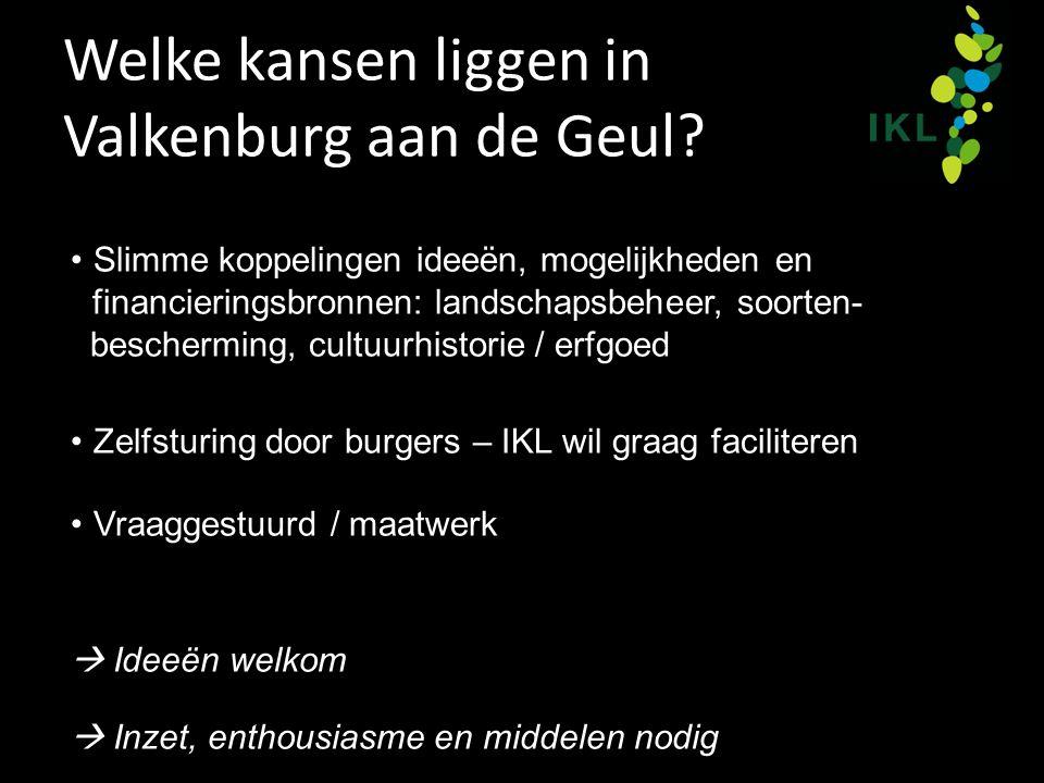 Welke kansen liggen in Valkenburg aan de Geul? Slimme koppelingen ideeën, mogelijkheden en financieringsbronnen: landschapsbeheer, soorten- beschermin