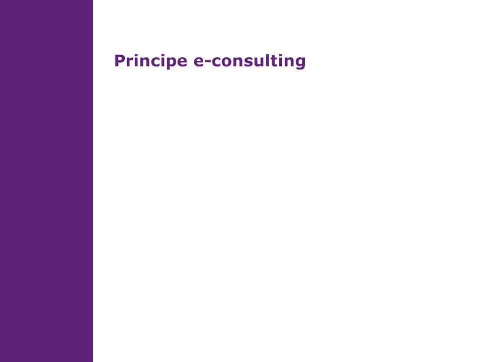 Principe e-consulting