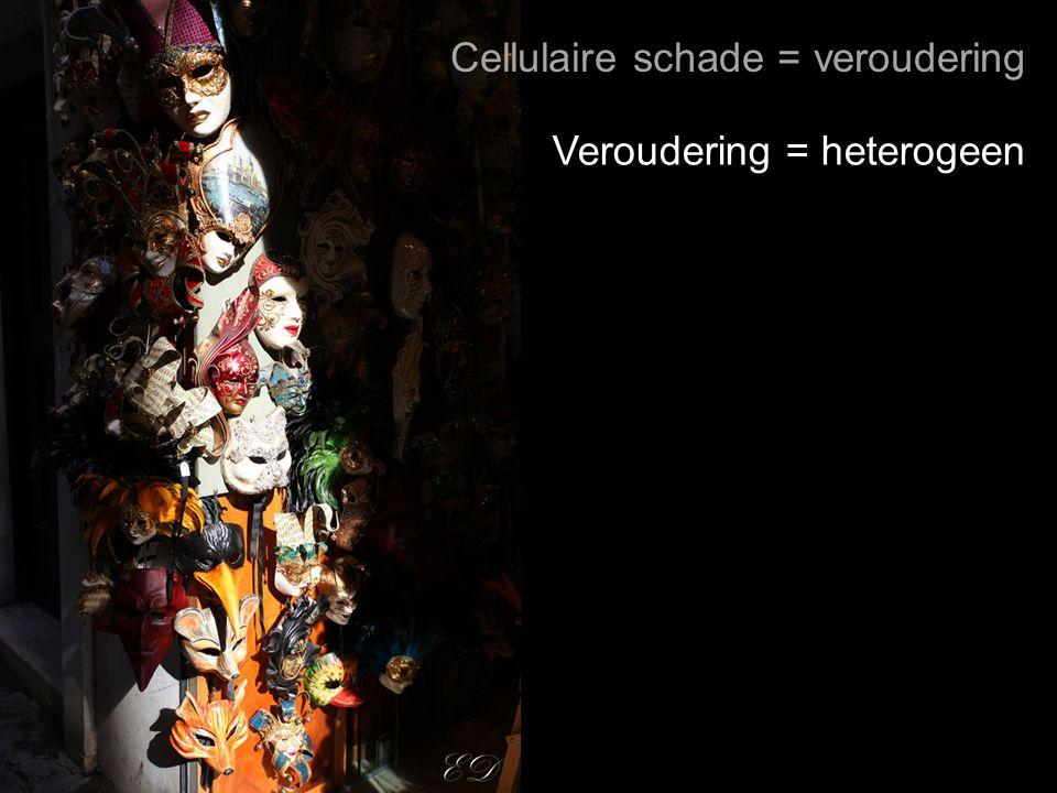 Cellulaire schade = veroudering Veroudering = heterogeen