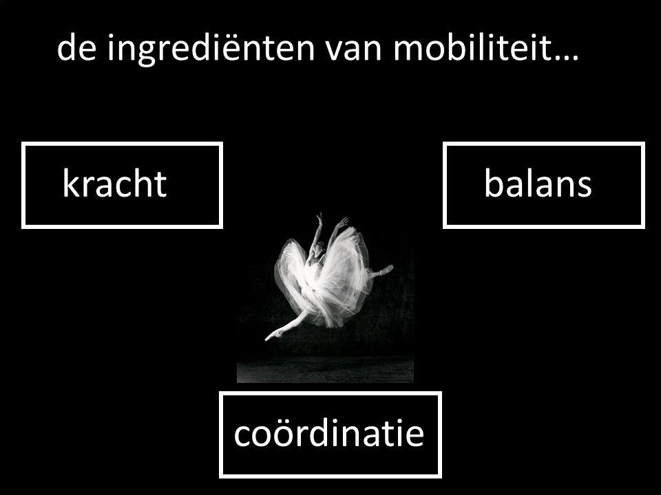 kracht de ingrediënten van mobiliteit… balans coördinatie