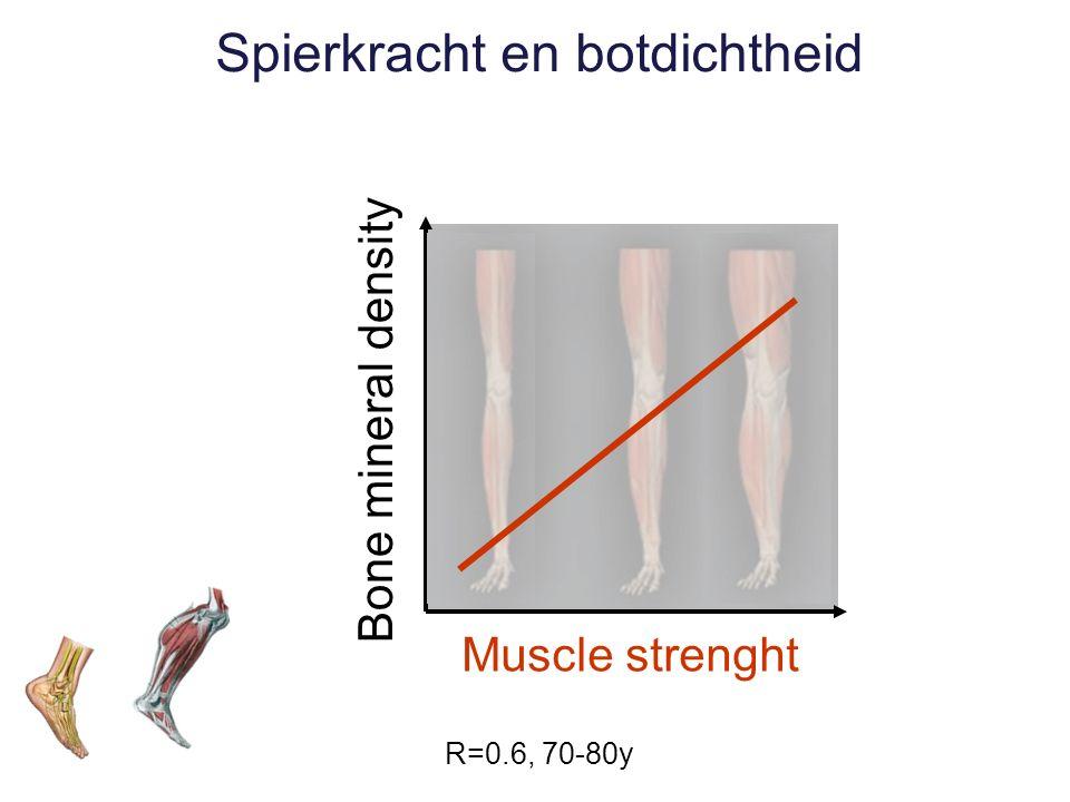 Bone mineral density Muscle strenght Spierkracht en botdichtheid R=0.6, 70-80y