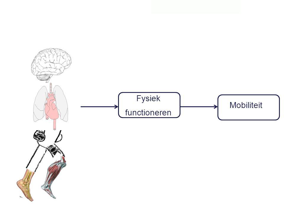 Mobiliteit Fysiek functioneren