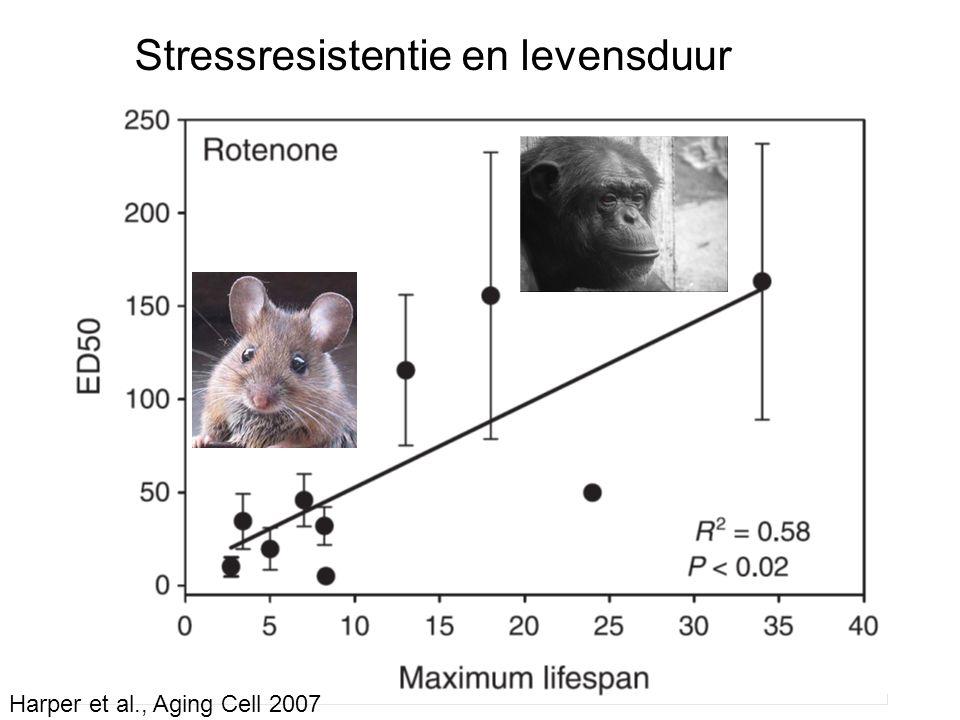 Harper et al., Aging Cell 2007 Stressresistentie en levensduur