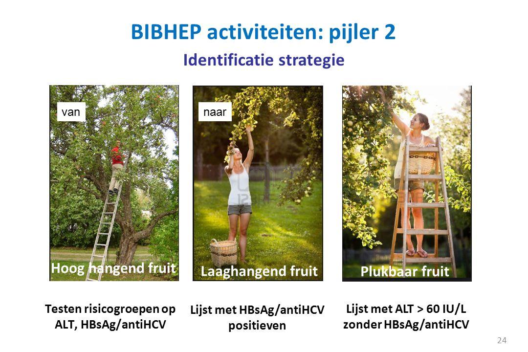 24 BIBHEP activiteiten: pijler 2 Identificatie strategie Testen risicogroepen op ALT, HBsAg/antiHCV Lijst met ALT > 60 IU/L zonder HBsAg/antiHCV Plukbaar fruit Hoog hangend fruit van Laaghangend fruit Lijst met HBsAg/antiHCV positieven naar