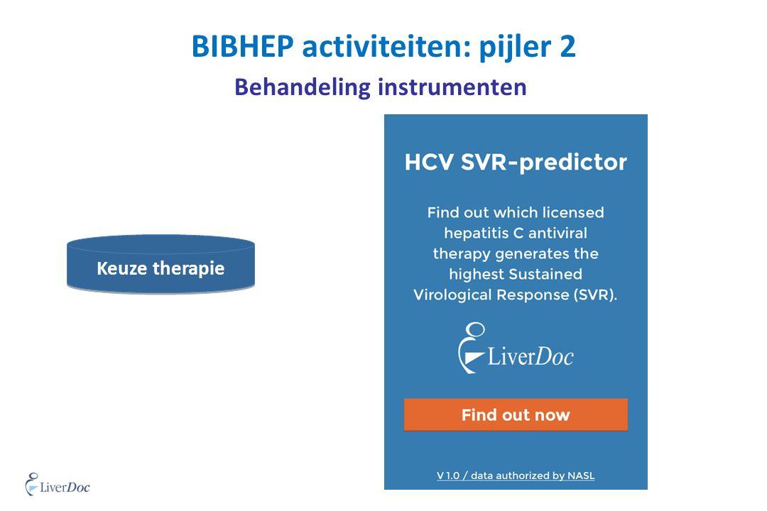 BIBHEP activiteiten: pijler 2 Behandeling instrumenten Keuze therapie print
