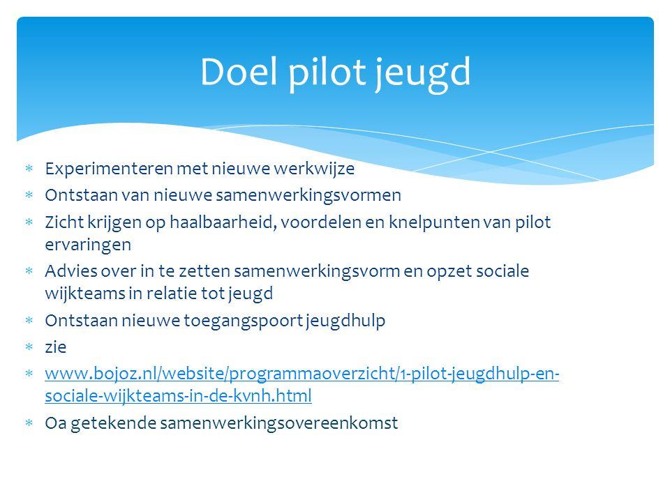  Experimenteren met nieuwe werkwijze  Ontstaan van nieuwe samenwerkingsvormen  Zicht krijgen op haalbaarheid, voordelen en knelpunten van pilot erv